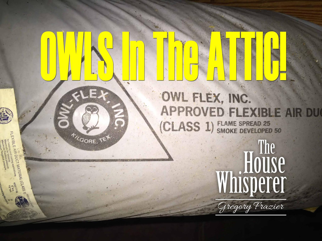 Owls In The Attic Art Plumbing Ac Amp Electric
