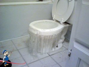overflowing toilet