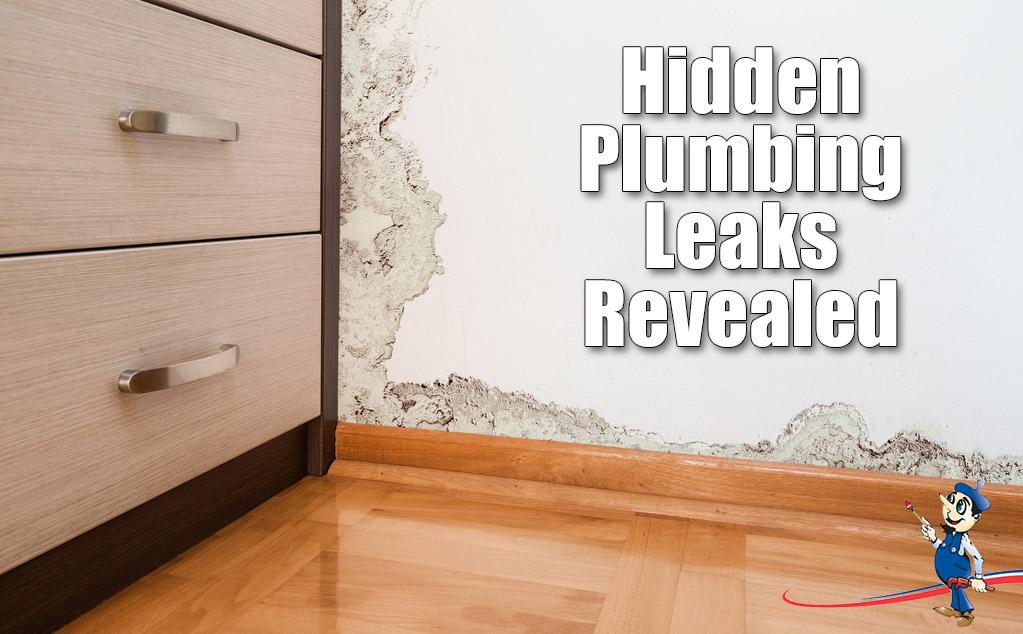 hidden plumbing leaks