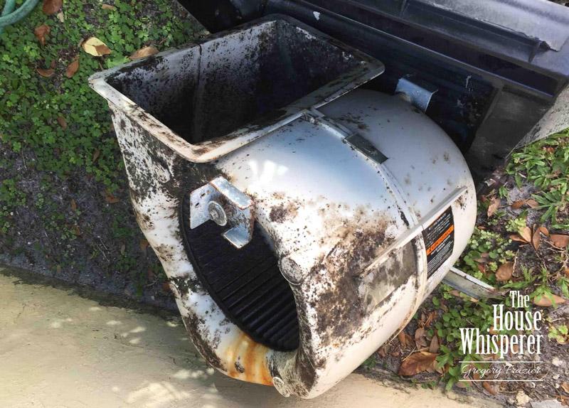 moldy blower motor