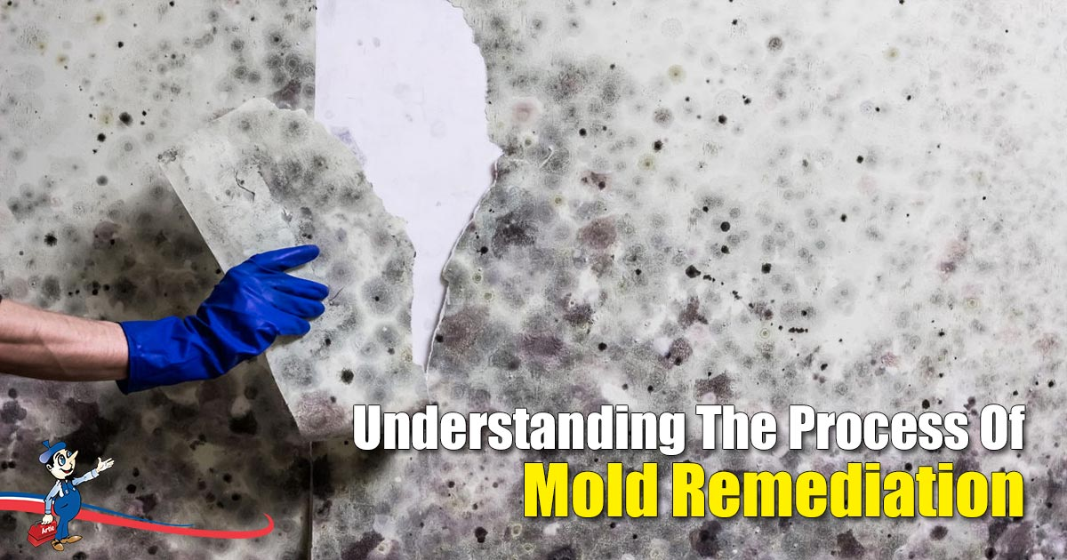 grasp the essence and necessity of mold remediation Anaerobic Bacteria Remediation mold remediation