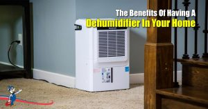 Dehumidifier In Your Home